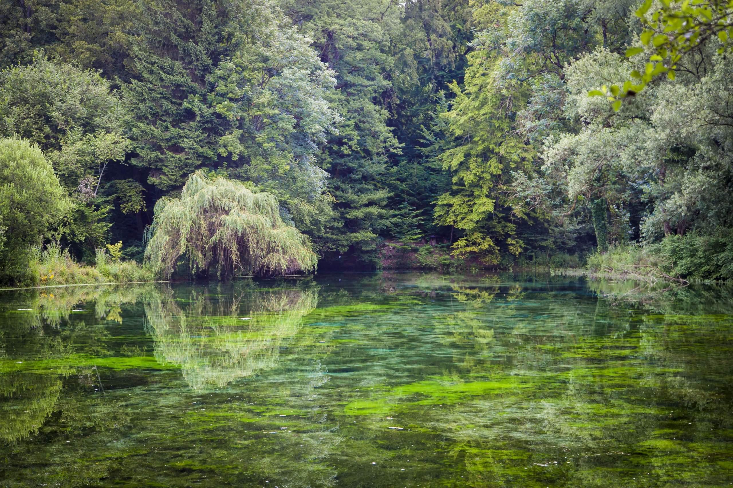 Source Bleue · La Source Bleue · Hotel de Charme Insolite Haute-Marne